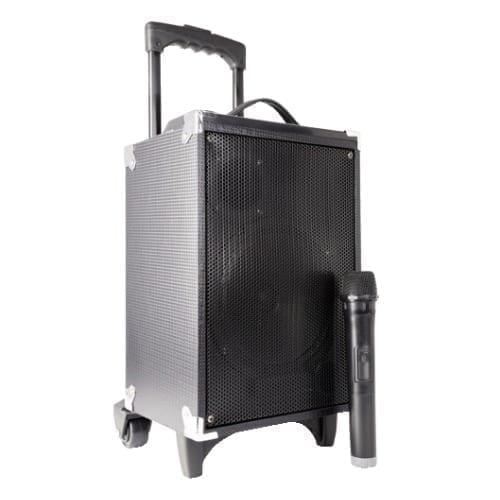 Cassa amplificata / batteria con radiomicrofono 130W Fenton